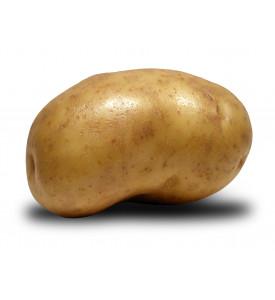 Картофель большой Гриль, Россия
