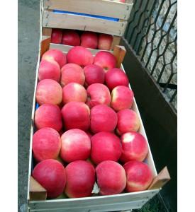 Коробка яблок Айдаред, 13 кг