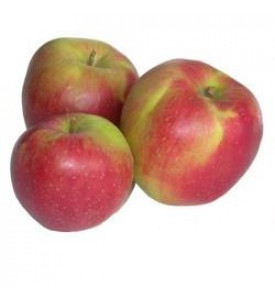 Яблоки Лигол (Сербия)