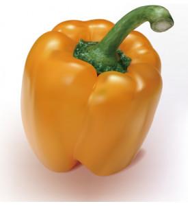 Перец оранжевый (Израиль)
