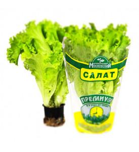 Салат в горшочке (Россия)