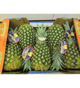Ящик ананасов, 5й калибр, 12 кг, Коста-Рика