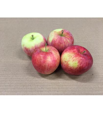 Яблоки Пирус, 1кг