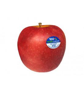 Яблоки Квин Новая Зеландия, 1кг