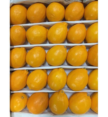 Лимон Узбекистан, 1кг