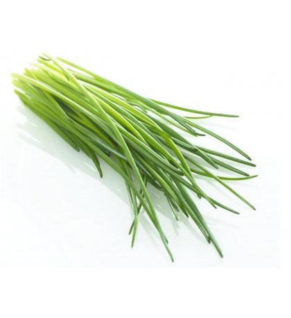 Зеленый лук пучок 100г, Россия