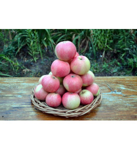 Яблоки Мантет, 1 кг