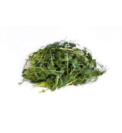 Микрозелень горох 100 г