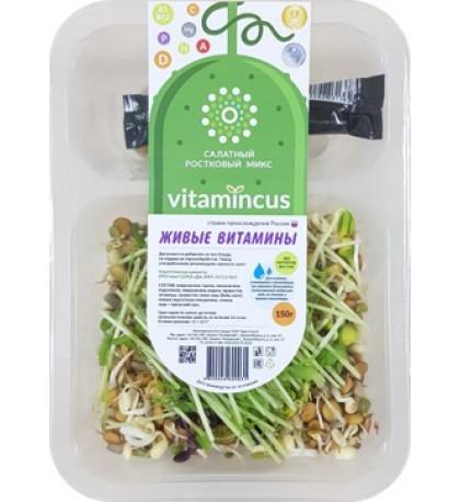 """Салат из проростков """"Живые витамины"""", 150г."""
