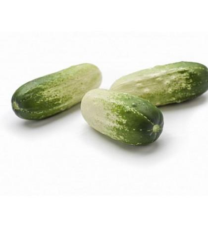 Мини огурцы бело-зеленые, 1 кг