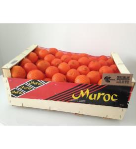 Ящик мандаринов 10 кг, Марокко Нур/Клементина