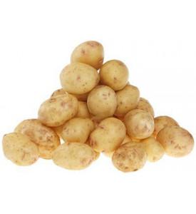 Картофель маленький Черри, Россия