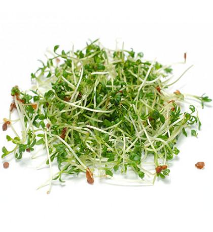 Микрозелень кресс салат, 100 г