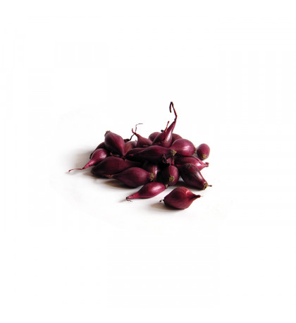 Лук севок сорт Ред Барон, 1 кг
