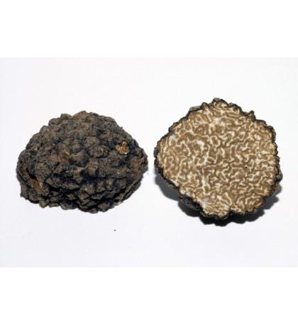 Черный летний трюфель Истивум Tuber Aestivum 1 кг