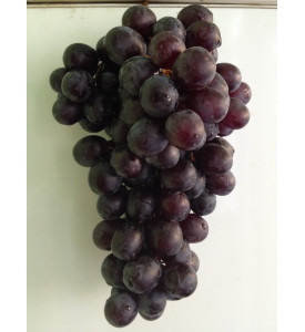 Виноград Чарас, Узбекистан 1кг