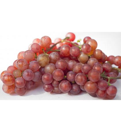 Виноград красный, кишмиш Армения, 1кг