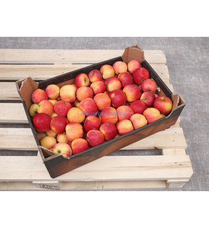 Ящик яблок Гала, 13 кг