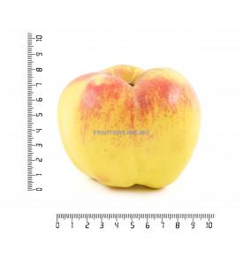 Яблоко богатырь, 1 шт