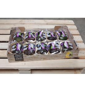 Коробка авокадо хасс, 10 пач.