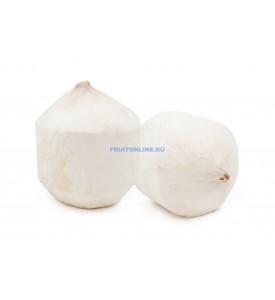 Молодой кокос (Индонезия/Таиланд) 1 шт