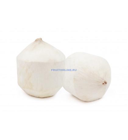 Молодой кокос, 1 шт