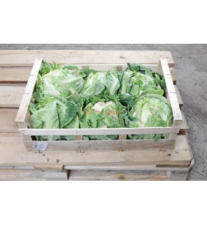 Упаковка цветной капусты, 10 кг