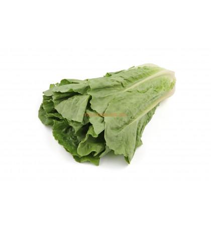 Салат романо, 1 кг