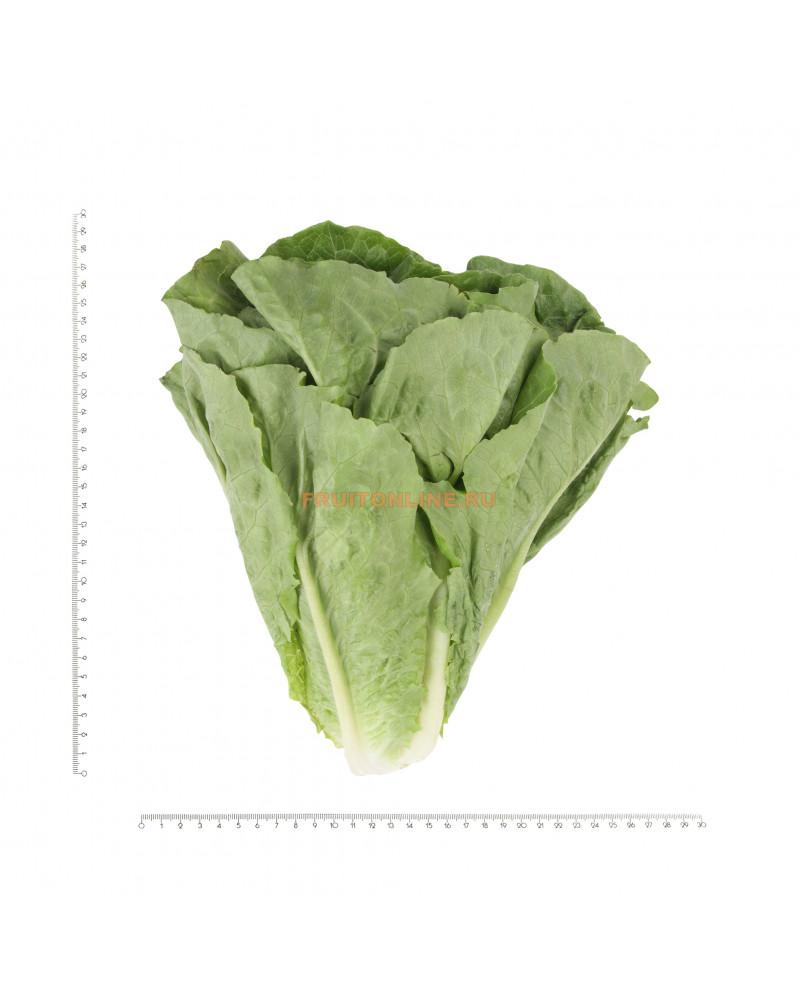салат романо семена цена