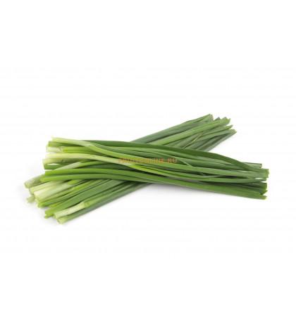 Зеленый лук пучок, 100 г