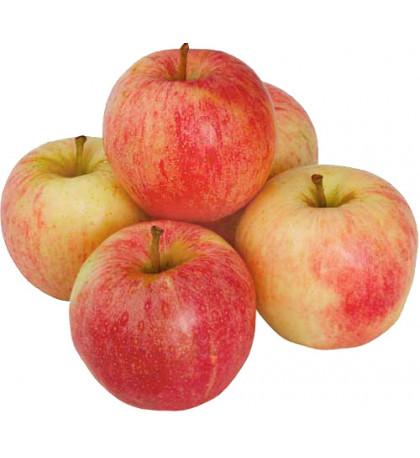 Яблоки Гала 1шт