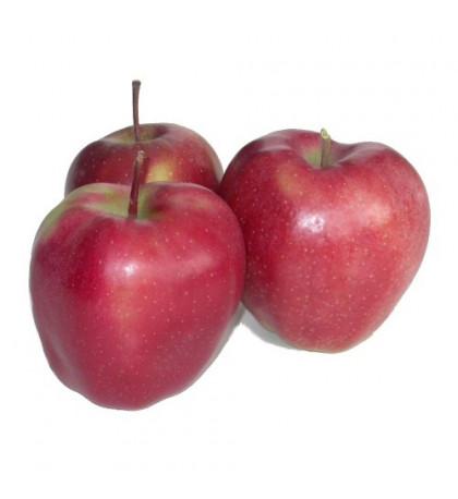 Яблоки Глостер 1шт