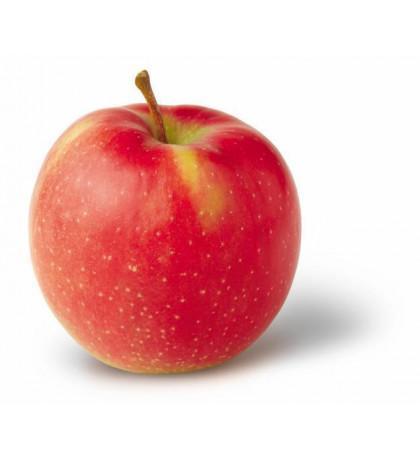 Яблоки Джонагоред 1шт