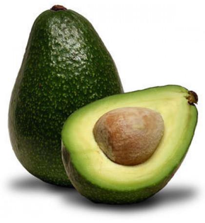 Авокадо Израиль