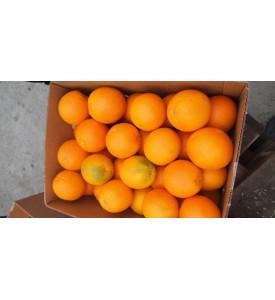 Апельсины Египет 1шт